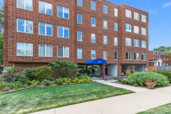 Photo of 355 W Miner Street, Unit Number 3D, ARLINGTON HEIGHTS, IL 60005 (MLS # 10524642)