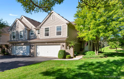 Photo of 176 River Mist Drive, Unit Number 176, Oswego, IL 60543 (MLS # 10532427)