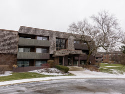 Photo of 513 Timber Ridge Drive, Unit Number 305, Carol Stream, IL 60188 (MLS # 10535482)