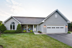Photo of 8911 Pater Court, Spring Grove, IL 60081 (MLS # 10541458)