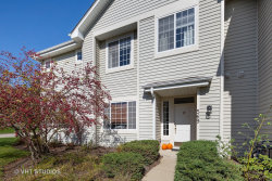 Photo of 569 Blue Springs Drive, Unit Number 569, Fox Lake, IL 60020 (MLS # 10541742)