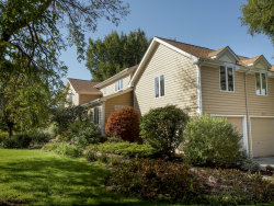 Photo of 4103 Robert Parker Coffin Road, Long Grove, IL 60047 (MLS # 10543597)