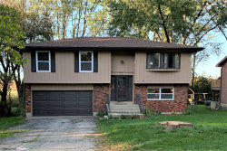 Photo of 217 Plum Street, Lake In The Hills, IL 60156 (MLS # 10544705)