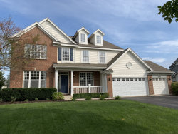 Photo of 26302 Mapleview Drive, Plainfield, IL 60585 (MLS # 10544981)