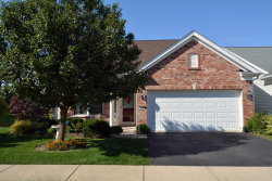Photo of 14289 Newport Circle, Huntley, IL 60142 (MLS # 10546453)
