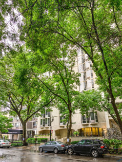 Photo of 1340 N Dearborn Street, Unit Number 16E, Chicago, IL 60610 (MLS # 10546901)