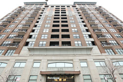 Photo of 849 N Franklin Street, Unit Number 918, Chicago, IL 60610 (MLS # 10555020)