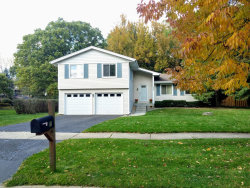 Photo of 337 Carriage Hill Road, Naperville, IL 60565 (MLS # 10555316)