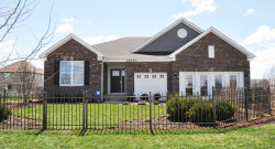 Photo of 15901 S Selfridge Circle, Plainfield, IL 60586 (MLS # 10558924)