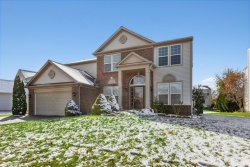 Photo of 251 Tiger Street, Bolingbrook, IL 60490 (MLS # 10559688)