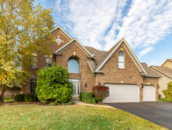 Photo of 11650 Liberty Lane, Plainfield, IL 60585 (MLS # 10559718)