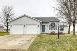 Photo of 707 Country View Drive, Philo, IL 61864 (MLS # 10562239)