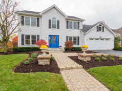 Photo of 5083 Switch Grass Lane, Naperville, IL 60564 (MLS # 10562756)