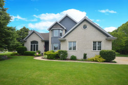 Photo of 24463 W Emyvale Court, Plainfield, IL 60586 (MLS # 10565263)