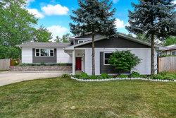 Tiny photo for 736 72nd Street, Downers Grove, IL 60516 (MLS # 10565399)