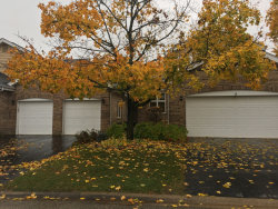 Photo of 17400 Brook Crossing Lane, Orland Park, IL 60467 (MLS # 10566567)