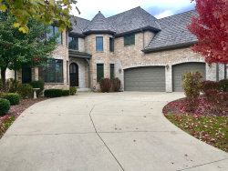 Photo of 7258 Litchfield Court, Long Grove, IL 60060 (MLS # 10566624)