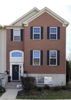 Photo of 276 Comstock Drive, Unit Number 276, Elgin, IL 60124 (MLS # 10568259)