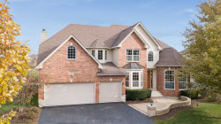 Photo of 12927 Timber Wood Circle, Plainfield, IL 60585 (MLS # 10569421)