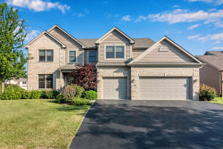 Photo of 1130 Oak Point Court, Antioch, IL 60002 (MLS # 10569511)
