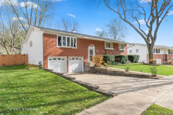 Photo of 261 N Lytle Drive, Palatine, IL 60074 (MLS # 10569687)