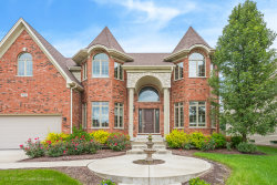Photo of 2908 Willow Ridge Drive, Naperville, IL 60564 (MLS # 10570658)