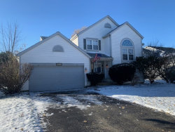 Photo of 5276 Eaglewood Court, Plainfield, IL 60586 (MLS # 10573653)