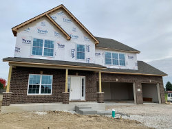 Photo of 16545 Mueler Circle, Plainfield, IL 60544 (MLS # 10574133)