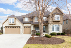 Photo of 5208 Bamboo Lane, Naperville, IL 60564 (MLS # 10574553)