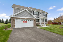 Photo of 13508 Arborview Circle, Plainfield, IL 60585 (MLS # 10575505)