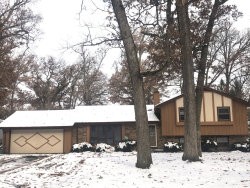 Photo of 8612 Coral Road, Wonder Lake, IL 60097 (MLS # 10575529)