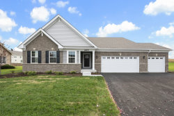 Photo of 26917 Summergrove Drive, Plainfield, IL 60585 (MLS # 10575774)