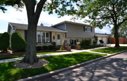 Photo of 3953 W 102nd Street, Chicago, IL 60655 (MLS # 10575884)