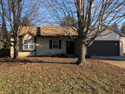 Photo of 204 Barnwood Trail, McHenry, IL 60050 (MLS # 10576296)