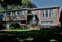 Photo of 7300 Willow Avenue, Woodridge, IL 60517 (MLS # 10579541)