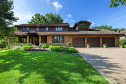 Photo of 431 Creekside Court, Willowbrook, IL 60527 (MLS # 10580877)
