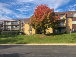 Photo of 1103 N Mill Street, Unit Number 302, Naperville, IL 60563 (MLS # 10581193)