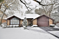 Photo of 11320 Arrowhead Trail, Indian Head Park, IL 60525 (MLS # 10585364)