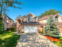 Photo of 515 Maple Avenue, Willow Springs, IL 60480 (MLS # 10585654)