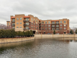 Photo of 1210 N Foxdale Drive, Unit Number 2-310, Addison, IL 60101 (MLS # 10585663)