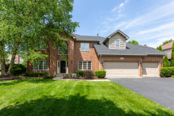 Photo of 3108 Mistflower Lane, Naperville, IL 60564 (MLS # 10586116)