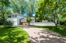 Photo of 1006 N Elmhurst Road, Prospect Heights, IL 60070 (MLS # 10595103)