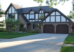 Photo of 6240 Squire Lane, Willowbrook, IL 60527 (MLS # 10604531)