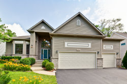 Photo of 404 River Grove Court, Vernon Hills, IL 60061 (MLS # 10606953)