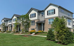 Photo of 24 E Heritage Court, Unit Number 2-6, Arlington Heights, IL 60004 (MLS # 10612358)