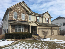Photo of 26308 Whispering Woods Circle, Plainfield, IL 60585 (MLS # 10612934)