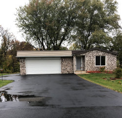 Photo of 22172 W Pineview Drive, Antioch, IL 60002 (MLS # 10613720)