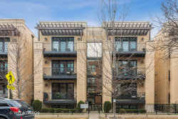 Photo of 2219 W Wabansia Avenue, Unit Number 2W, Chicago, IL 60647 (MLS # 10616932)