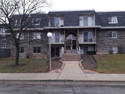 Photo of 866 Cider Lane, Unit Number 13205, Prospect Heights, IL 60070 (MLS # 10617876)
