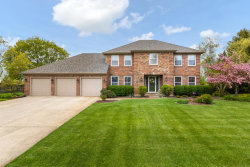 Photo of 24144 Royal Worlington Drive, Naperville, IL 60564 (MLS # 10618190)